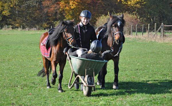 Pony-Ferienspiele im Gelände